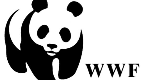WWF Sambut Baik Langkah Pemerintah Dorong Pengembangan Industri Jasa Keuangan Berkelanjutan