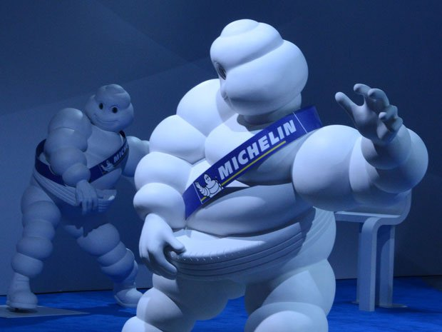 WWF dan Produsen Ban Michelin Kembangkan Pasar Karet Alam