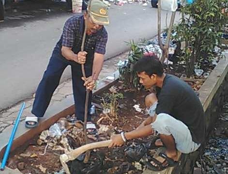 Pohon Mangga Solusi Ramah Lingkungan
