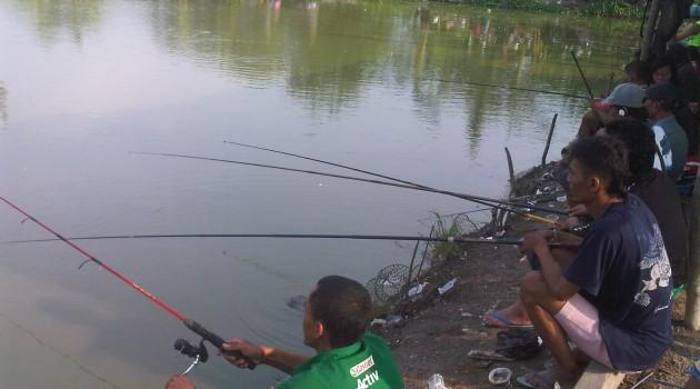 Suka Mancing Ikan Nila Ini Cara Dan Umpannya Agar
