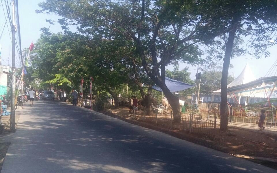 Jalur Hijau Taman Cipucang Berubah Fungsi Lokasi Jualan Hewan Qurban
