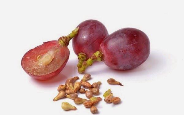 6 Khasiat Biji Anggur Yang Sering Kamu Buang, Salah Satunya Bisa Cegah Kanker dan Stroke