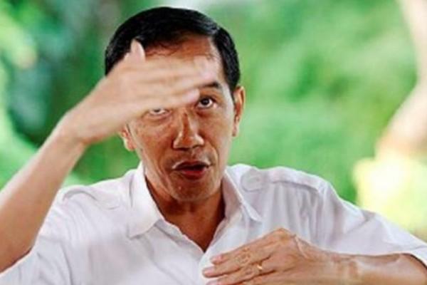 Kinerja Ekonomi Melambat, Tingkat Dukungan terhadap Jokowi Merosot hingga 31 persen