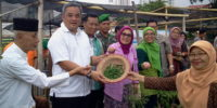 Kelompok Tani Yang Manfaatkan Lahan Tidur di Jakarta Pusat Akan Didukung Penuh Oleh Pemerintah