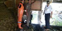 Kerap Dijadikan Tempat Singgah Pendatang, 2 Gubuk Liar Di Kolong Jembatan Digusur Petugas